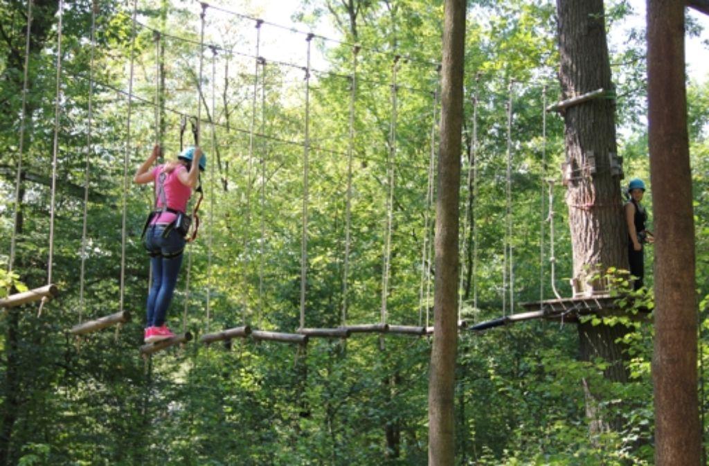Wer im Waldklettergarten unterwegs ist, sollte einigermaßen schwindelfrei sein. Geht es doch in bis zu elf Metern Höhe über schwankende Pfade. Foto: Benjamin Bauer