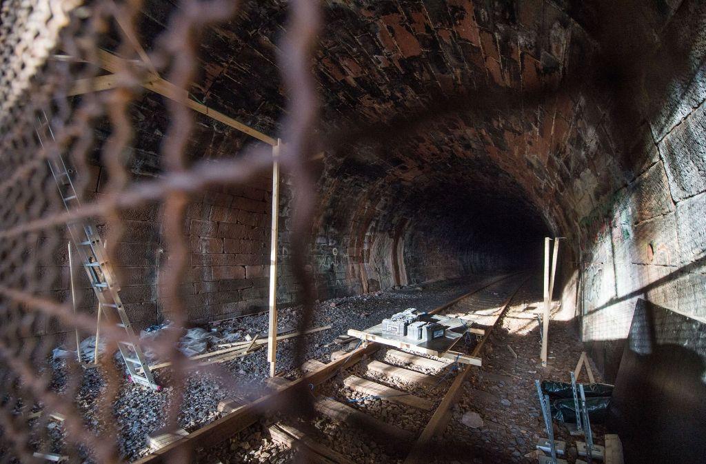 Der Hirsauer Tunnel bei Calw. Hufeisennase oder Hesse-Bahn? Wer hat Vorfahrt im Kreis Calw? Foto: dpa