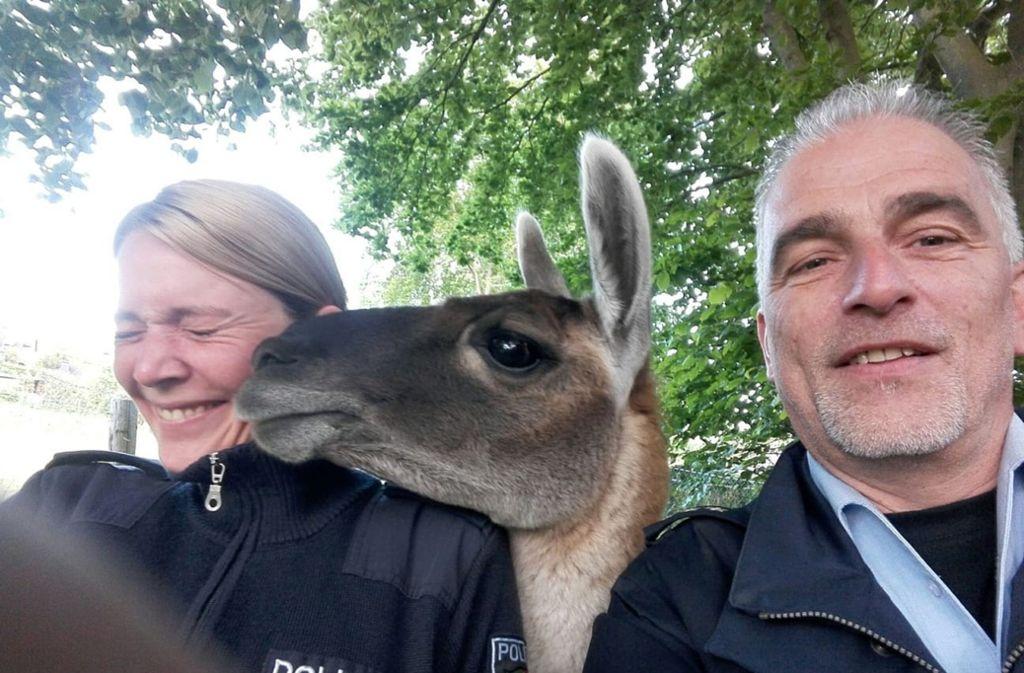 Zwei Beamte machten zum Abschluss noch ein Foto mit einem der Tiere. Foto: dpa