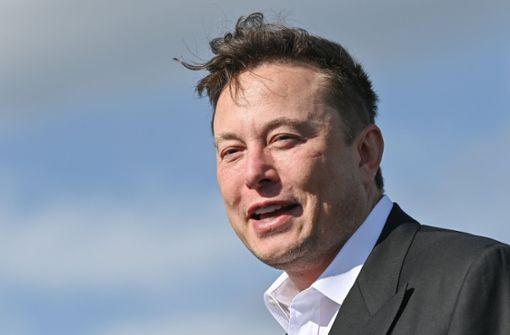 Elon Musk sucht Gespräch mit Wladimir Putin per Chat-App