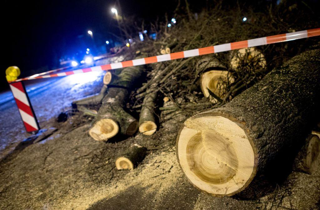 """Orkantief """"Friederike"""", das von Westen her über Deutschland fegte, ist laut Deutschem Wetterdienst (DWD) der schwerste Sturm seit dem Jahr 2007. Foto: dpa"""