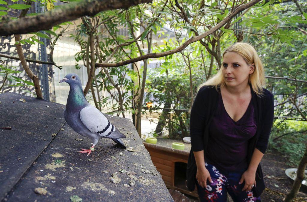 Britta Leins rettet schwer verletzte Tauben. Foto: factum//Simon Granville