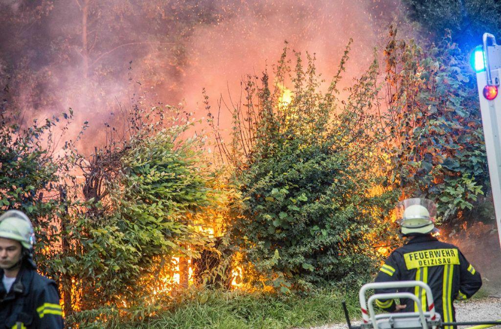 Mehrer Hütten der Kleintierzuchtanlage in Plochingen brennen. Foto: SDMG