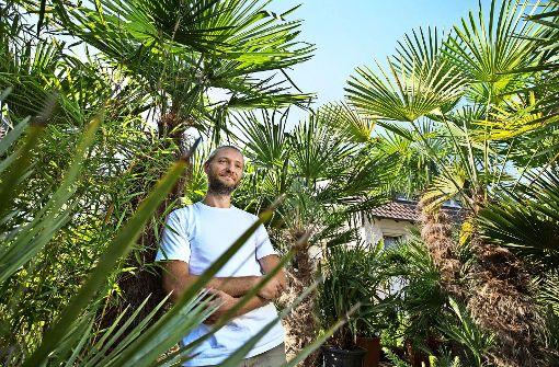 Johannes Niemeyer hat sich auf exotische Pflanzen spezialisiert, die auch einem frostigen Winter standhalten. Foto: Michael Steinert