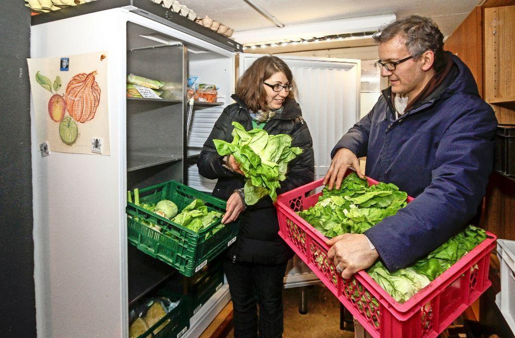 Salat haben Mirjam und Thomas Junginger seit Jahren nicht mehr selbst eingekauft, Den gibt es beim Foodsharing reichlich. Foto: factum/Bach