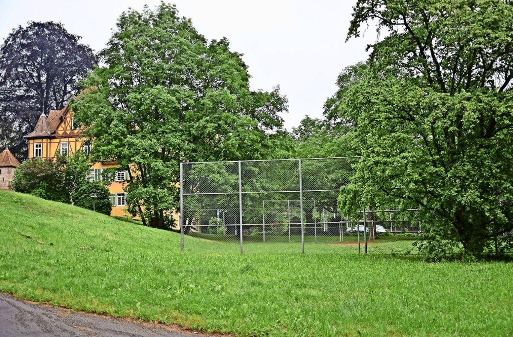 Auf diesem Rasenplatz beim Palmschen Schloss soll ab 10. Juli eine Mountainbike-Strecke aufgebaut werden. Foto: Janey Schumacher