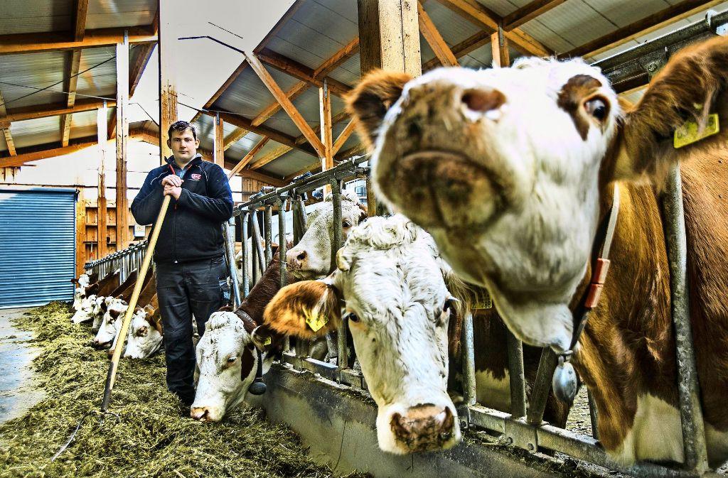 Landwirt Christoph Glaser aus Schlat stellt sich den Herausforderungen Foto: Horst Rudel