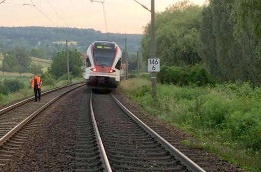 Zug fährt gegen umgestürzten Baum