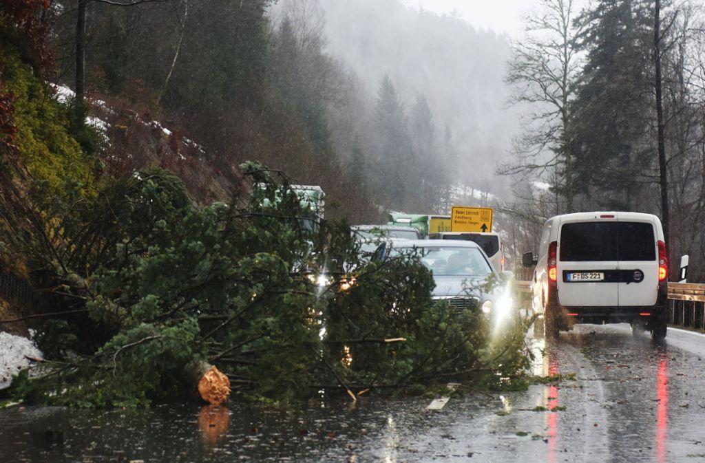 """Im Schwarzwald stürzten Bäume wegen """"Burglind"""" auf die Straßen. Foto: dpa"""