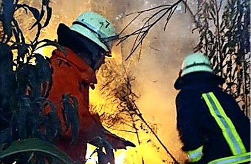 Vom Waldbrand bis zur Leichenbergung