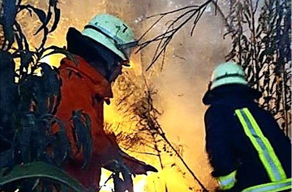 Vor allem Waldbrände halten die Feuerwehr von Carlos Pfannl auf Trab. Foto: privat