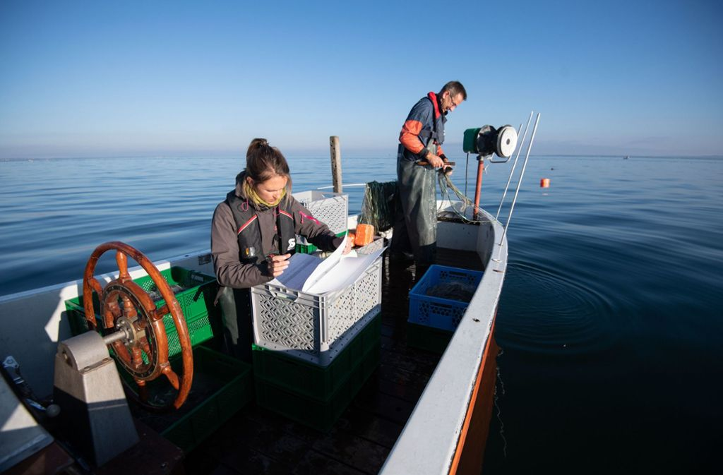 Barbara Scholz (l), Projektleiterin, notiert auf einem Forschungsboot Daten eines Fangs, daneben holt Andreas Revermann ein Netz ein. Foto: dpa/Marijan Murat