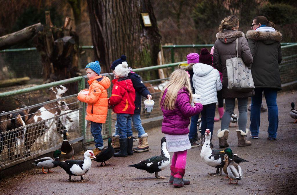 Der Tierpark Nymphaea steht bei den jungen Besuchern ganz besonders hoch  im Kurs. Foto: Ines Rudel/Archiv