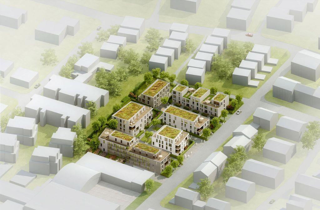 So sieht der Siegerentwurf aus: Auf dem früheren  Gelände der Firma Keim sollen Wohnungen und Reihenhäuser entstehen. Foto: iep