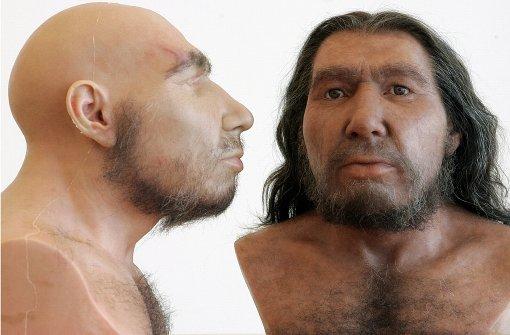 Genstudie: Bakterien aus Afrika rotteten Neandertaler aus
