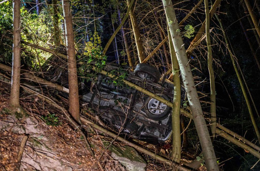 Der VW schanzt über eine Leitplanke und landet zwischen Bäumen. Foto: SDMG/SDMG / Kohls