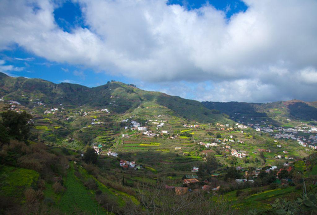 Die Bergwelt Gran Canarias hat es in sich, selbst ... Foto: Shutterstock/Tamara Kulikova