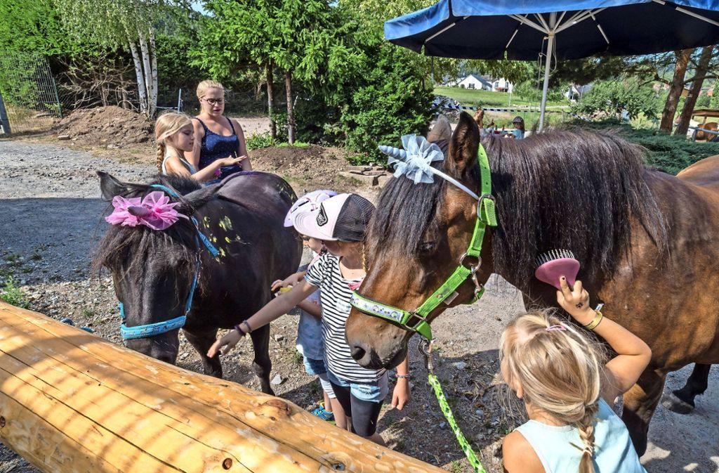 Mit viel Liebe putzen und verzieren die Mädchen die Pferde. Foto: factum/Weise