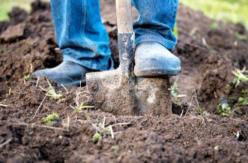 In diesem Artikel zeigen wir Ihnen, welche Möglichkeiten es gibt, Erde zu entsorgen und was die Entsorgung kostet.