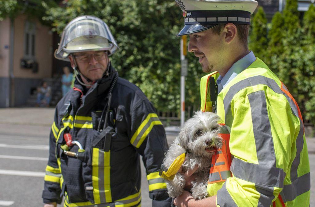 Ein Polizist hält ein gerettetes Hündchen in seinen Armen. Foto: 7aktuell.de/Oskar Eyb