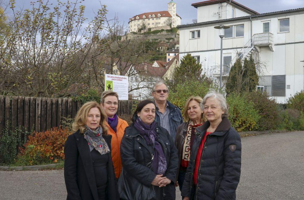 Eine Bürgerinitiative um die Sprecherin Renate Quiring (ganz rechts)  stellt sich gegen die Pläne der Stadt Vaihingen für das Gelände Köpfwiesen. Nun gibt es einen Bürgerentscheid. Foto: factum/Granville