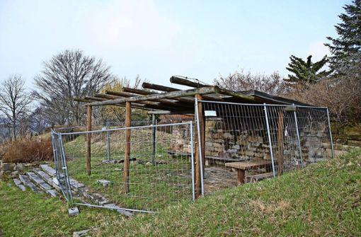 Artenschutz bremst Sanierung aus