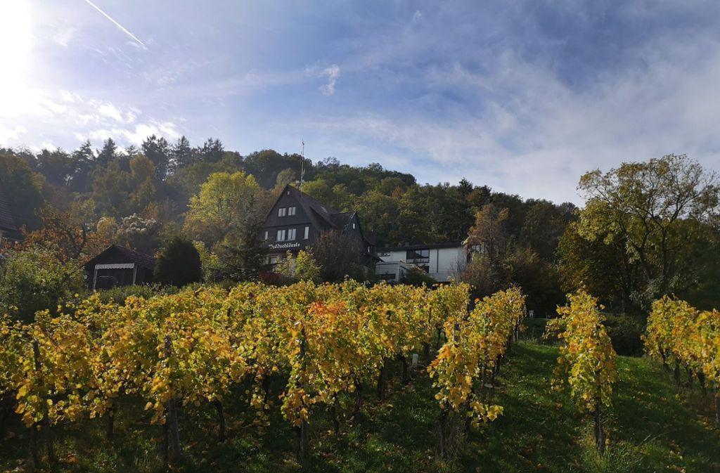 Sehnsuchtsort zwischen Wald und Reben: Das Waldschlössle auf dem Fellbacher Kappelberg wird an die Stadt verkauft. Foto: Patricia Sigerist