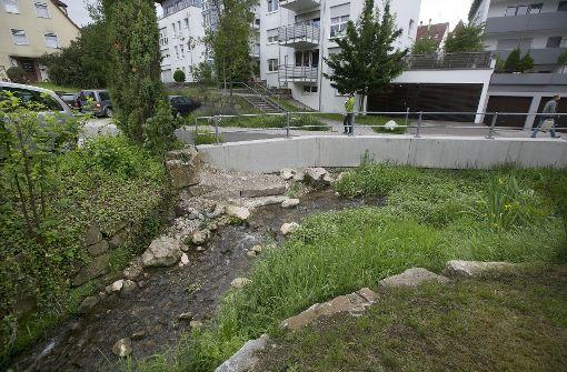 Das Kanalkind fließt bald durch grüne Auen