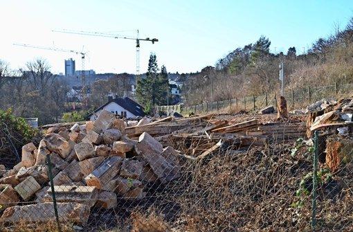 Im Dachswald entstehen neue Wohnungen