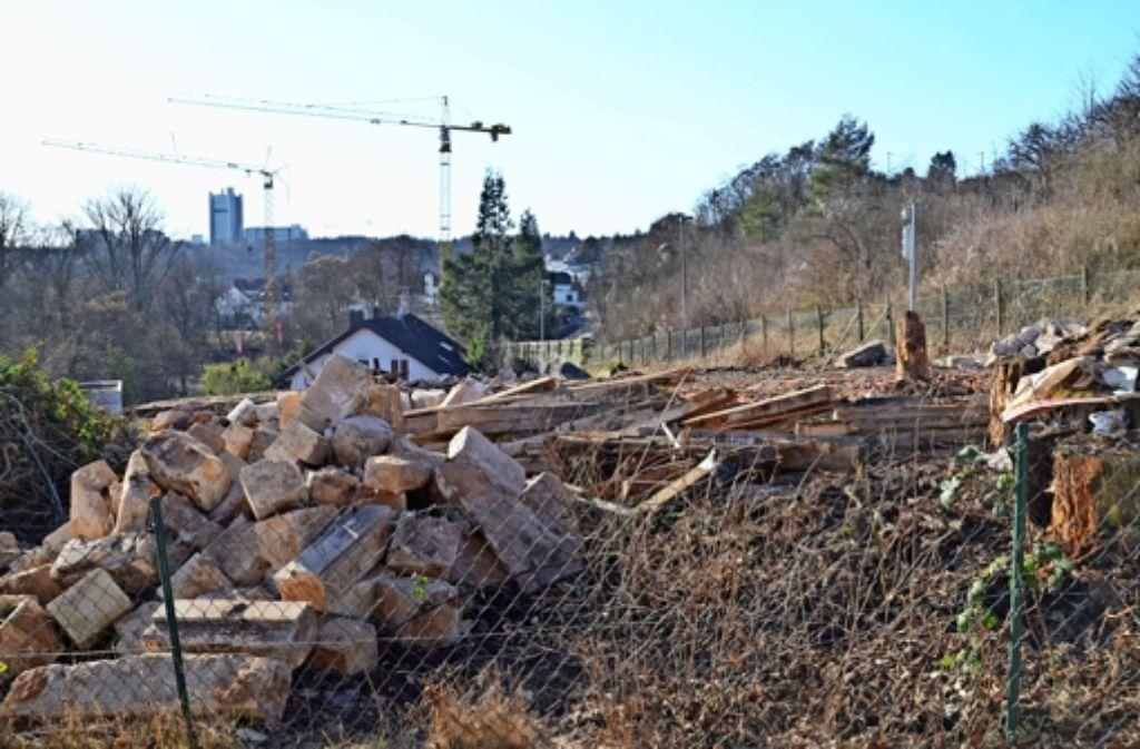 Die Villa  am Dachswaldweg ist abgerissen. Im Hintergrund arbeiten die Kräne am Gelände des einstigen Hotels. Foto: Sandra Hintermayr