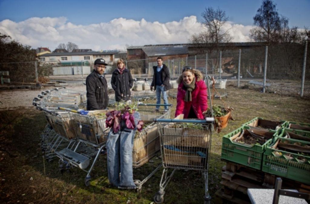 """Berlin-Mitte-Charme: in Bad Cannstatt bereitet sich das Projekt """"Inselgrün"""" auf das Frühjahr vor. Foto: Martin Stollberg"""