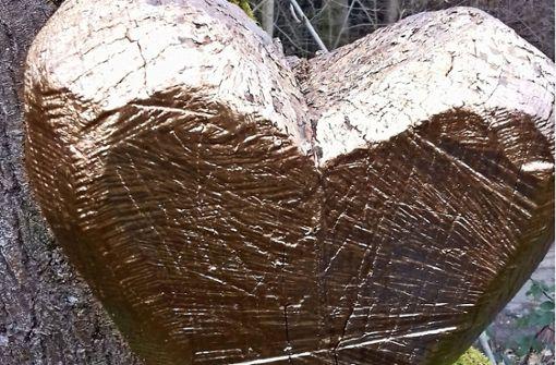 Wer weiß was zum goldenen Herz aus Holz?