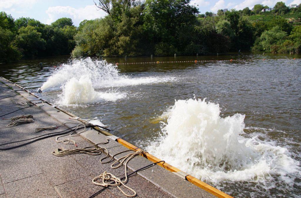 Das Technische Hilfswerk ist deshalb seit Sonnabend mit Pumpen im Einsatz, die das Wasser umwälzen und so mit Sauerstoff anreichern. Foto: 7aktuell.de/Andreas Werner