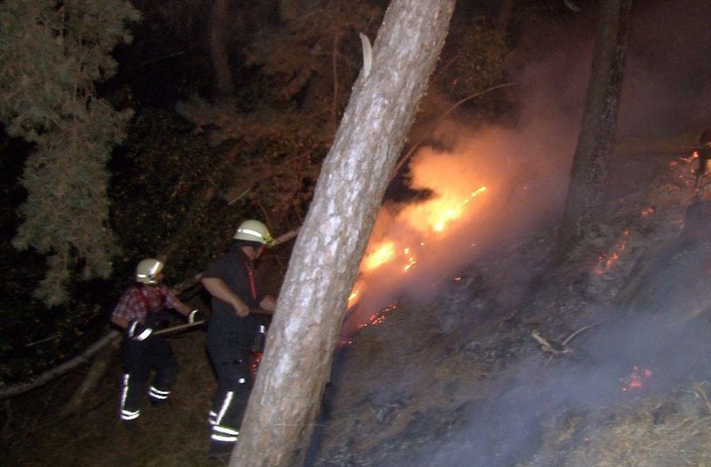 Langenstein-Eine große Fläche Wald ist im Harz abgebrannt. Foto: dpa