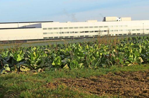 Filderstadt zwingt sich zu geringerem Wachstum