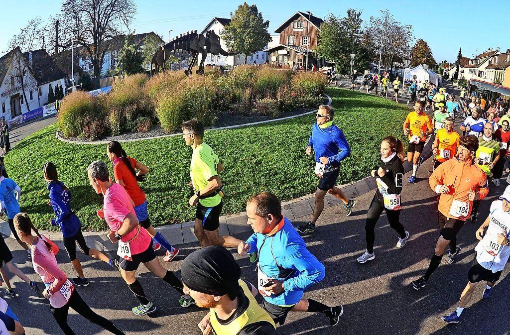 Beim Steppenelefant-Kreisel in Steinheim werden am Sonntag um 8.30 Uhr die Ultra-Läufer auf die Strecke geschickt.  Nach und nach folgenden  die kürzeren Distanzen. Freuen dürfen sich  alle Teilnehmer auf einen roten Teppich auf der Zielgeraden. Foto: Kuhnle/Archiv