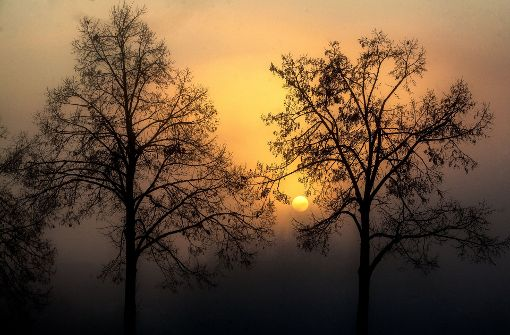 Erst Wolken, dann Chance auf Sonne