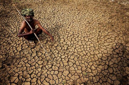 Über 1000 Menschen sterben durch Hitze