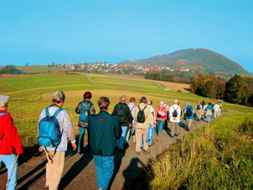 Eine Wanderung der Ortsgruppe Vaihingen des Schwäbischen Albvereins führte vergangenes Jahr zu den Kaiserbergen. Foto: z