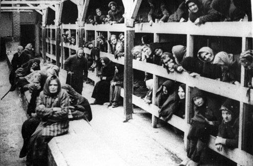Erster deutscher Holocaust-Lehrstuhl