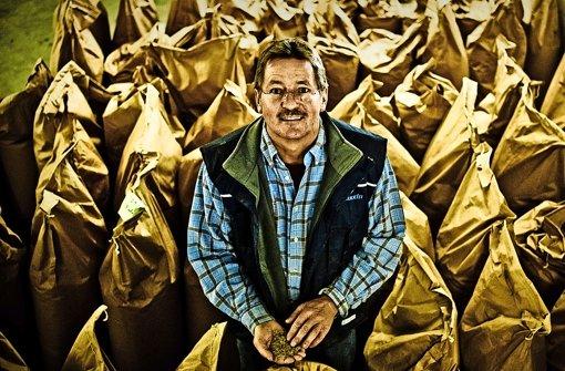 Vor 20 Jahren gab Rainer Hofmann die  Schweine auf und setzte auf Saatgutvermehrung Foto: Andreas Reiner