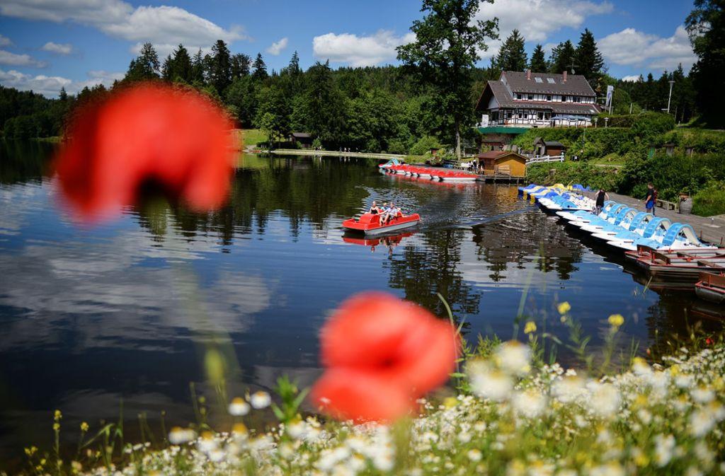 Der Ausflug muss nicht immer in die Ferne führen: Tretbootfahren am Ebnisee im Schwäbischen Wald. Foto: dpa/Jan-Philipp Strobel