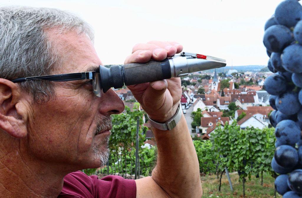 Kritischer Blick durchs Refraktometer: Wie viel Grad Oechsle hat der Traubensaft, wie wird hoch wird wohl die Qualität des späteren Weins? Foto: WZG Möglingen