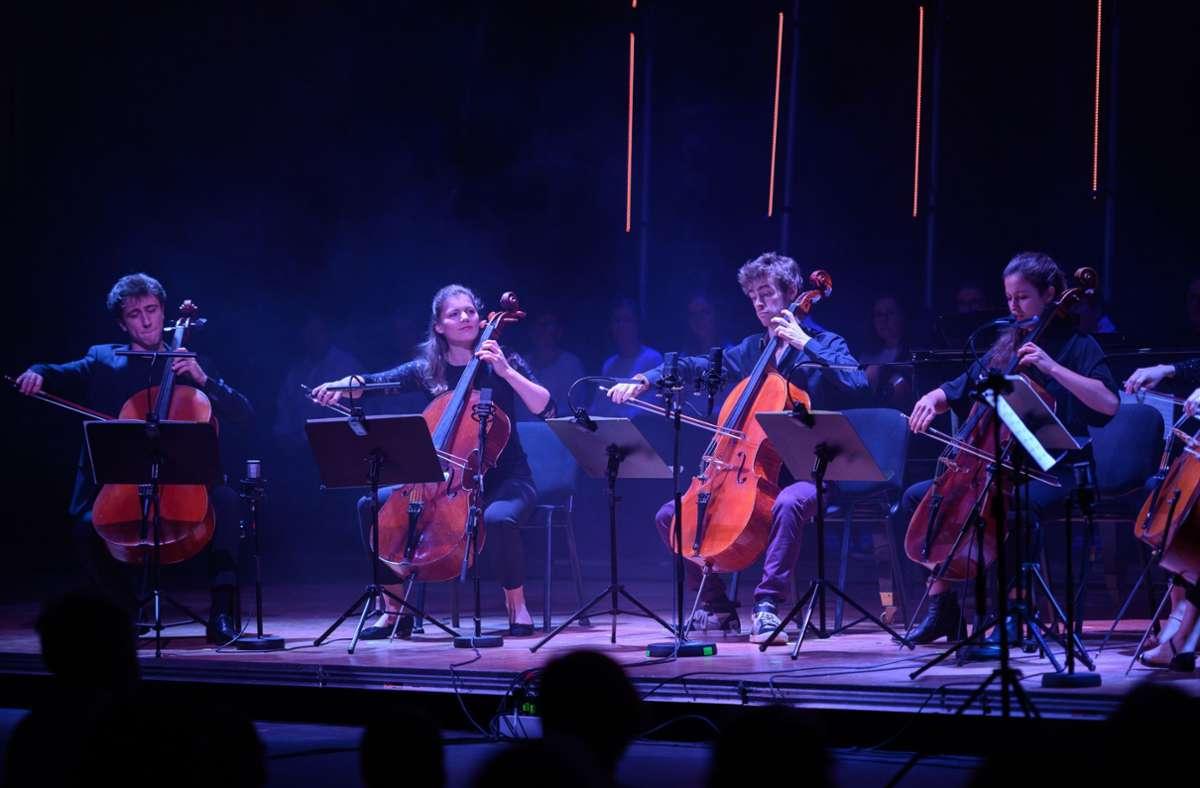 Erleichterung bei den Organisatoren:  Die Cello-Akademie kann wieder stattfinden. Foto: /S. Haase