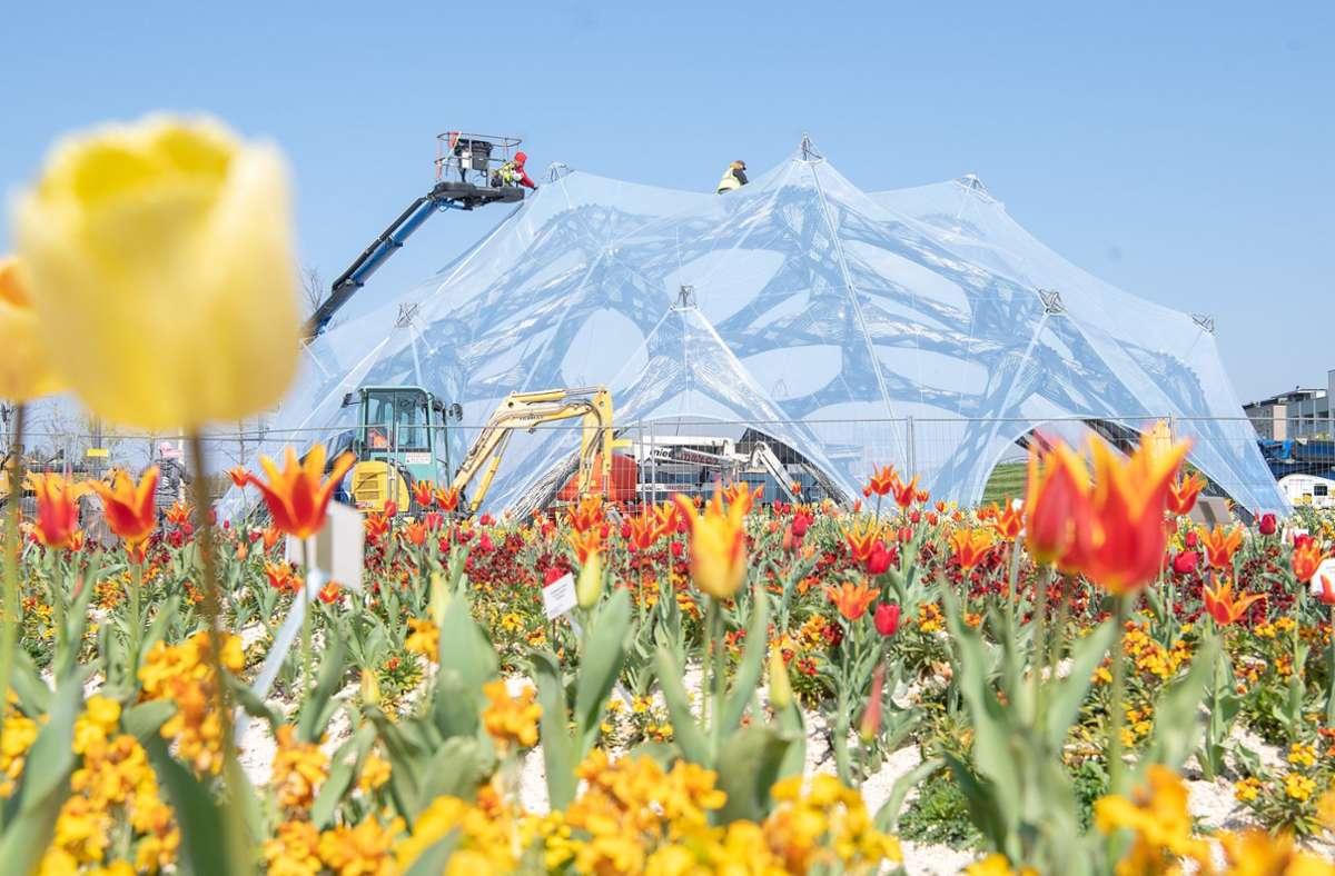2023 findet  in Mannheim die Bundesgartenschau statt. Sie  soll für einen Aufschwung der Wirtschaft im Rhein-Neckar-Raum sorgen. (Archivbild) Foto: dpa/Sebastian Gollnow