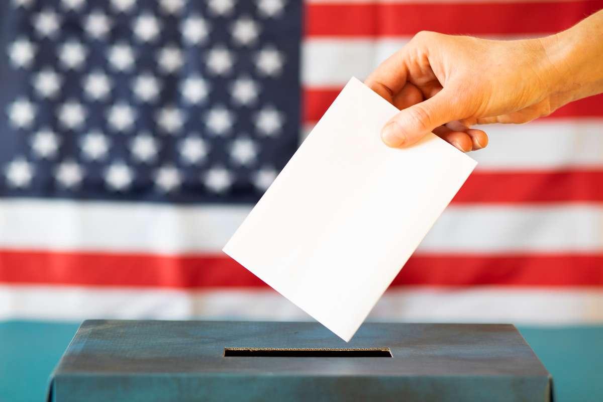Wie funktioniert das Wahlsystem der USA? Foto: Melinda Nagy/Shutterstock
