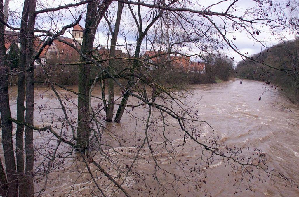 Bei Oberriexingen tritt die Enz häufig über die Ufer. Foto: StZN