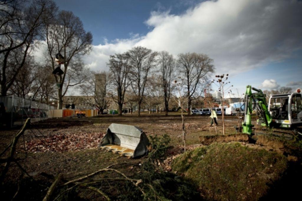 Der Streit um den Juchtenkäfer im Schlossgarten will nicht aufhören. Foto: Archiv