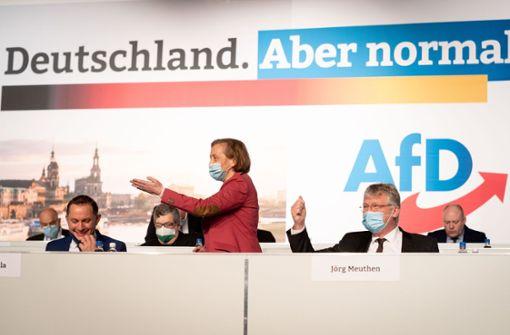 AfD setzt auf neue Einigkeit