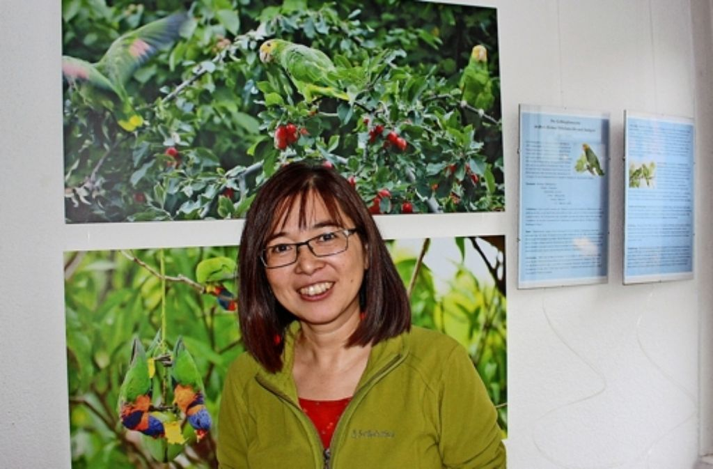 Bis zu drei Mal pro Woche zieht Tomoko Arai mit ihrer Kamera los, um die Cannstatter Gelbkopfamazonen zu beobachten. Foto: Annina Baur